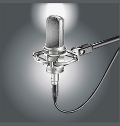 Studio microphone isolated on a gray background vector