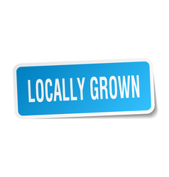 Locally grown square sticker on white vector