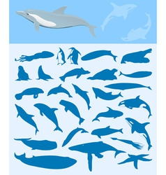 sea life silhouettes vector image vector image