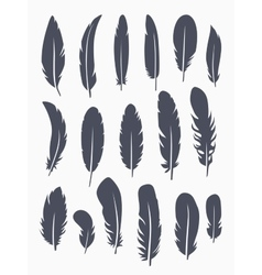 set of feather vector image