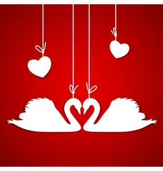 Red background with two white swans vector