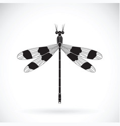 A dragonflies orolestes octomaculatus on white vector