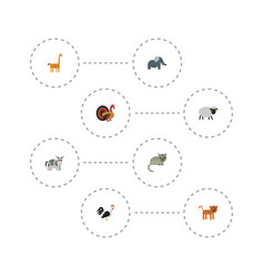 flat icons camelopard kine kitty and other vector image