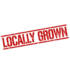 Locally grown stamp vector