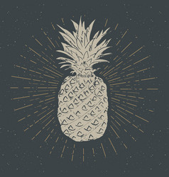 vintage label hand drawn pineapple grunge vector image vector image