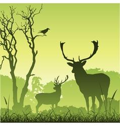Stag deer vector