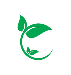 Circle leaf eco logo vector