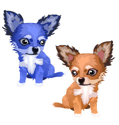 Lovely foxes of different colors blue and brown vector