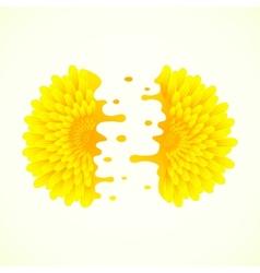 Split flower vector