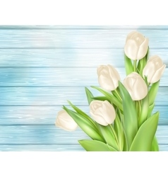 White tulips on turquoise wooden back eps 10 vector