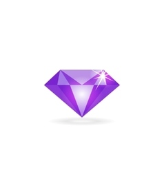 Diamond icon isolated logo concept of vector image
