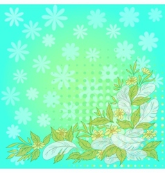 Flowers leaves feathers on blue and green vector image vector image