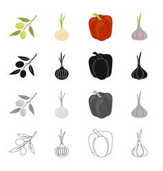 salad vegetarian food and other web icon in vector image