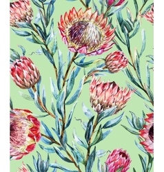 Watercolor tropical protea pattern vector