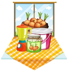 Onions near the window vector image