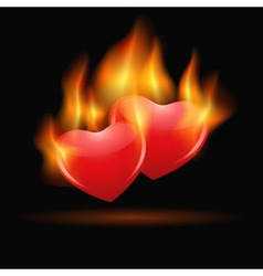 Burning hearts vector