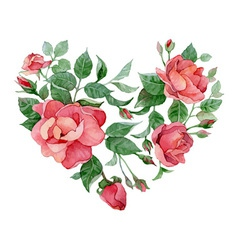 Floral abstract heart of roses vector