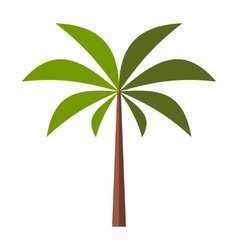 Palm tree flat icon vector