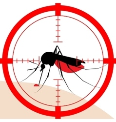 Target on mosquito bite vector