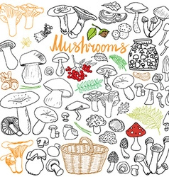 Mushrooms sketch doodles hand drawn set different vector