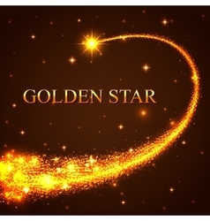 Shining falling golden star in the night sky vector