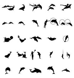 Dolphinarium silhouette set simple style vector image