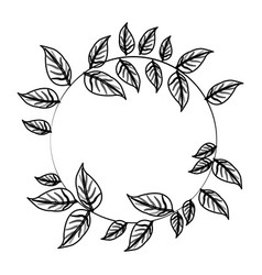Leaf or leaves icon image vector