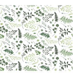 Seamless pattern of eucalyptus palm fern vector