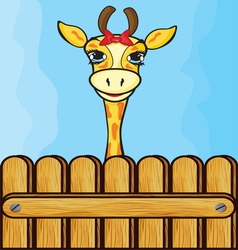 Giraffe card template vector image