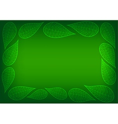 Green Leaves Spider Lace Background vector image vector image