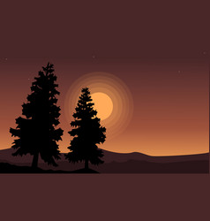 Silhouette of tree spruce scenery vector