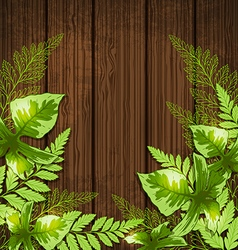 Summer background with green tropical leaves vector