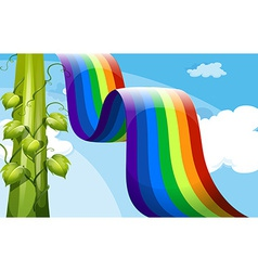 A rainbow and a tall vineplant vector