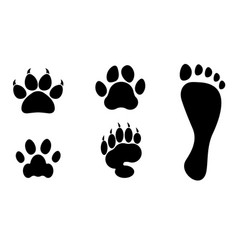 Animals and man foot print clip art vector