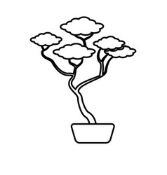 Bonsai tree ceramic pot botanical line vector