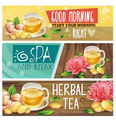 relaxing morning herbal tea banners set vector image