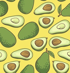 Avocado half of avocado avocado seed hand drawn vector