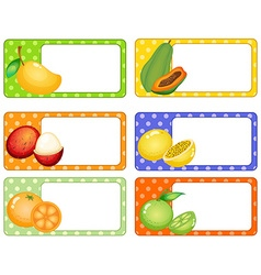Square labels with tropical fruits vector