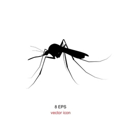 Mosquito icon isolated vector