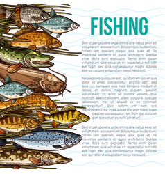 Poster for fishing or sea fish product vector