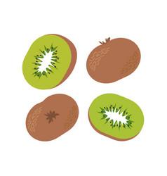 kiwi fruit and slice vector image