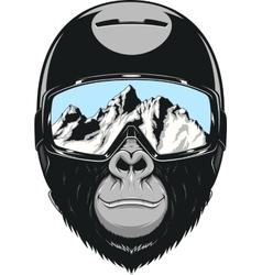 Monkey wearing a helmet vector image