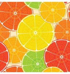 Abstract citrus vector