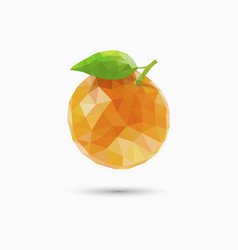 orange fruit in polygonal style vector image vector image