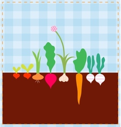 Vegetable bed vector image vector image