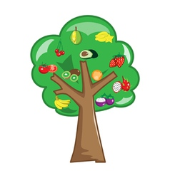 Fruit trees vector image