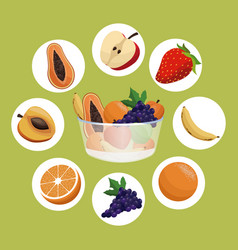 healthy fruit bowl diet eating vector image vector image