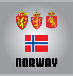Official government elements of norway vector