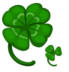 Green leaf clover symbol of success and good luck vector
