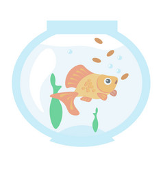 golden fish in the aquarium vector image